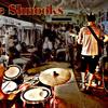 The Shnooks