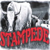 STAMPEDECOUNTRY