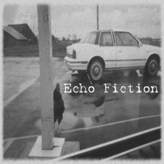 Echo fiction