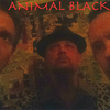 AnimalBlack