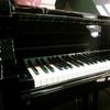 KeysMusician