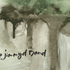 The jimmyd Band