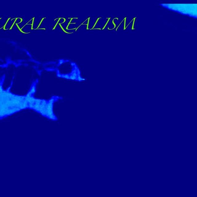 naturalrealism