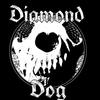 diamonddogrocks
