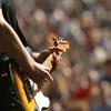 guitar jam dude