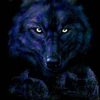Blue-hate-wolf