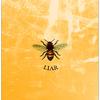 Honey Liar