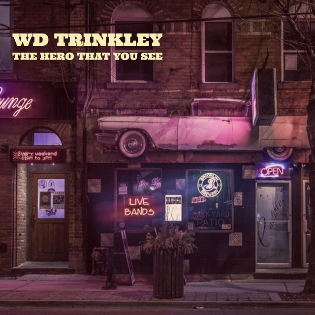 WD Trinkley, Blues, Soul, Americana Guitarist and Songwriter