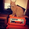 Tom Cat 89
