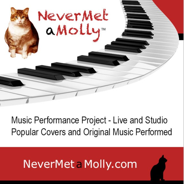 NeverMetaMolly-Project