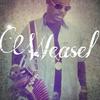 weasel1011315