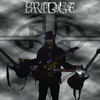 BridgeNail