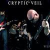 Cryptic Veil
