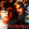 DeadHorsetheBand