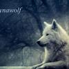Dynawolf