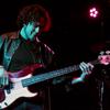 Adam Levy Bass Player