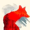The Fox Rebirth
