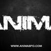 Animarock
