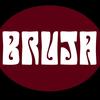 bruja1119947