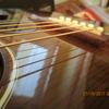 Fiddle098