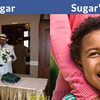 sugar1168444