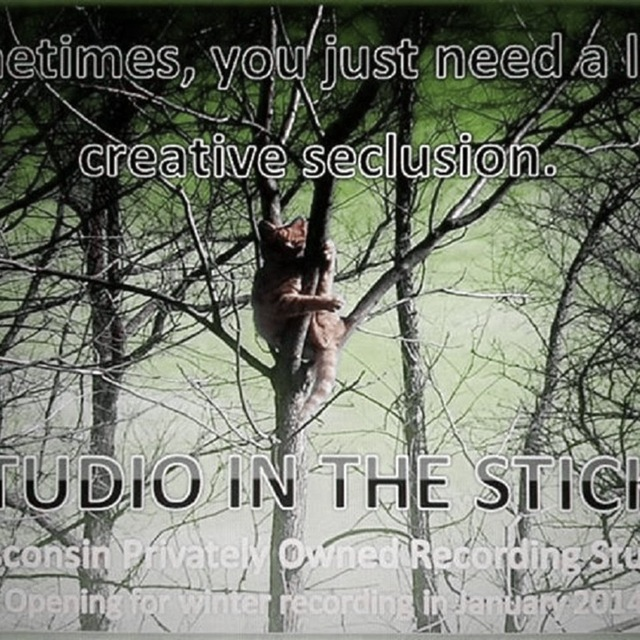 Taylor_StudiointheSticks