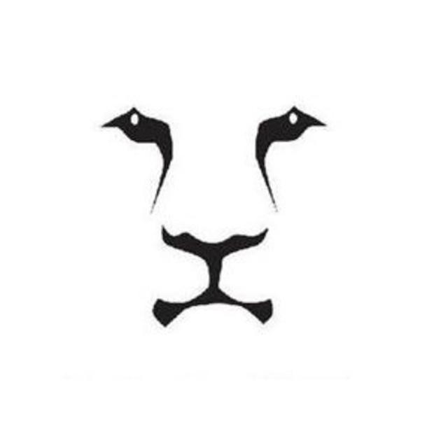 LionGroup
