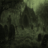 Boneyard1192629