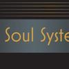 SoulSystemSWFL