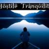 Hostile Tranquility