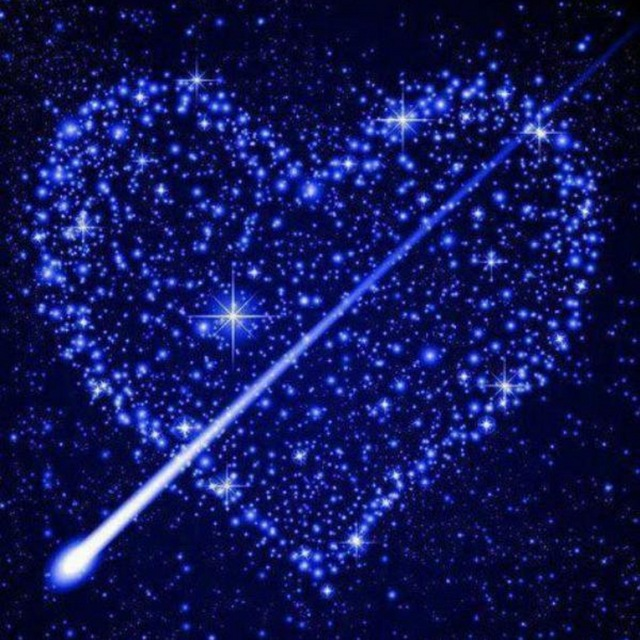 The Stars Shine For You