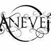 aneverband