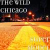 THE WILD Chicago