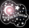 Wonderfool