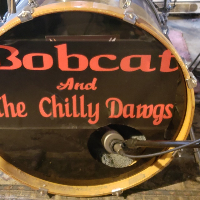 Bobcat And The Chilly Dawgs