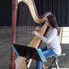charlamurrayharpist