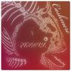 Piranha-Band