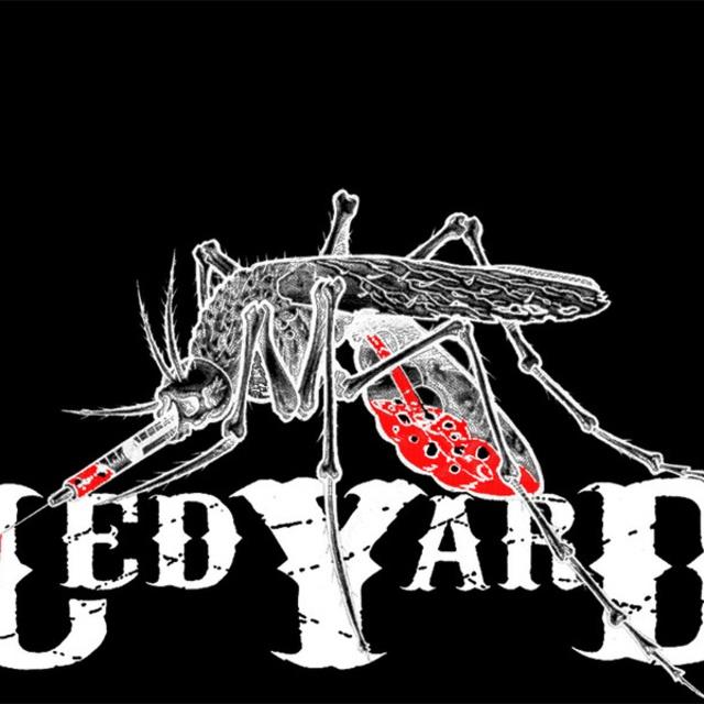 LEDYARD