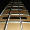BassPlayerMax