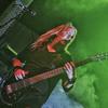 Bassplayer_2k