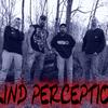 blindperception