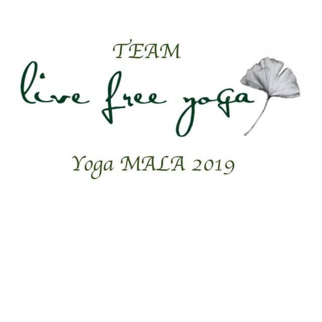 live free yoga