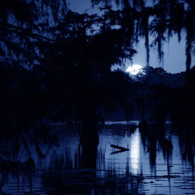 Dark Water Blues Project