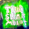 TheSlimeMolds