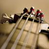 Bass_ftw