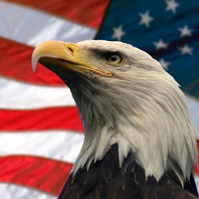 Golden Americana