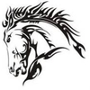 Darkhorse production