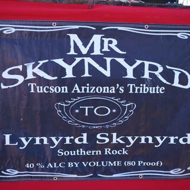 Mr Skynyrd