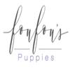 FouFouPuppies