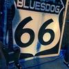 Bluesdog66